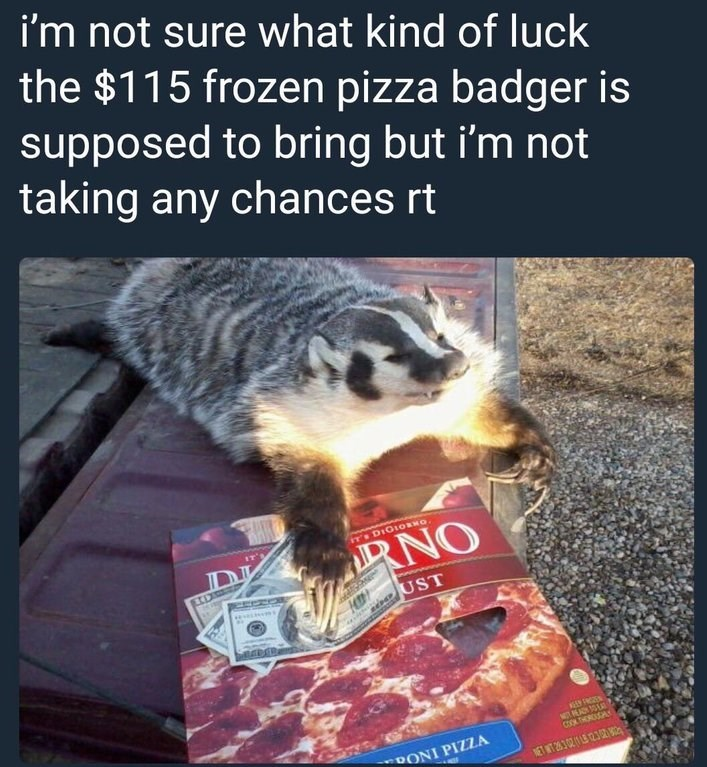 RT for luck meme with picture of badger holding money bills on top of frozen pizza box