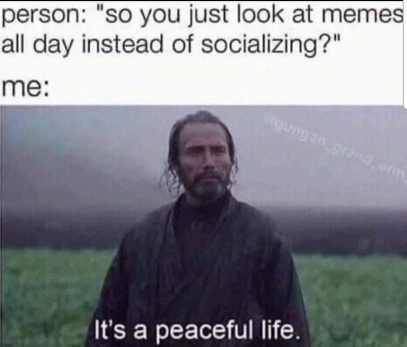 Rogue One meme about enjoying life when you replace people with memes