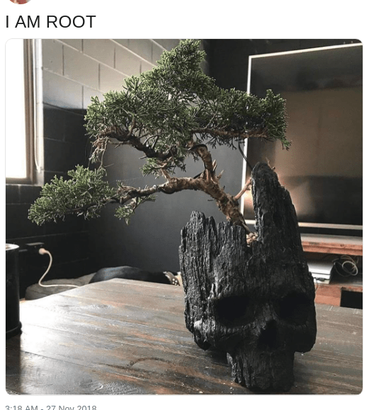 Dank meme of a tree growing out of a wooden skull and captioned I am root, a homage to the I AM GROOT memes