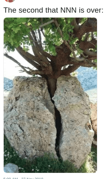 dank meme about No Nut November NNN and a picture of a tree cracking a nut shaped rock