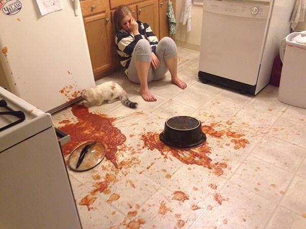 fail at cooking of a pot of tomato sauce that spilled onto the floor