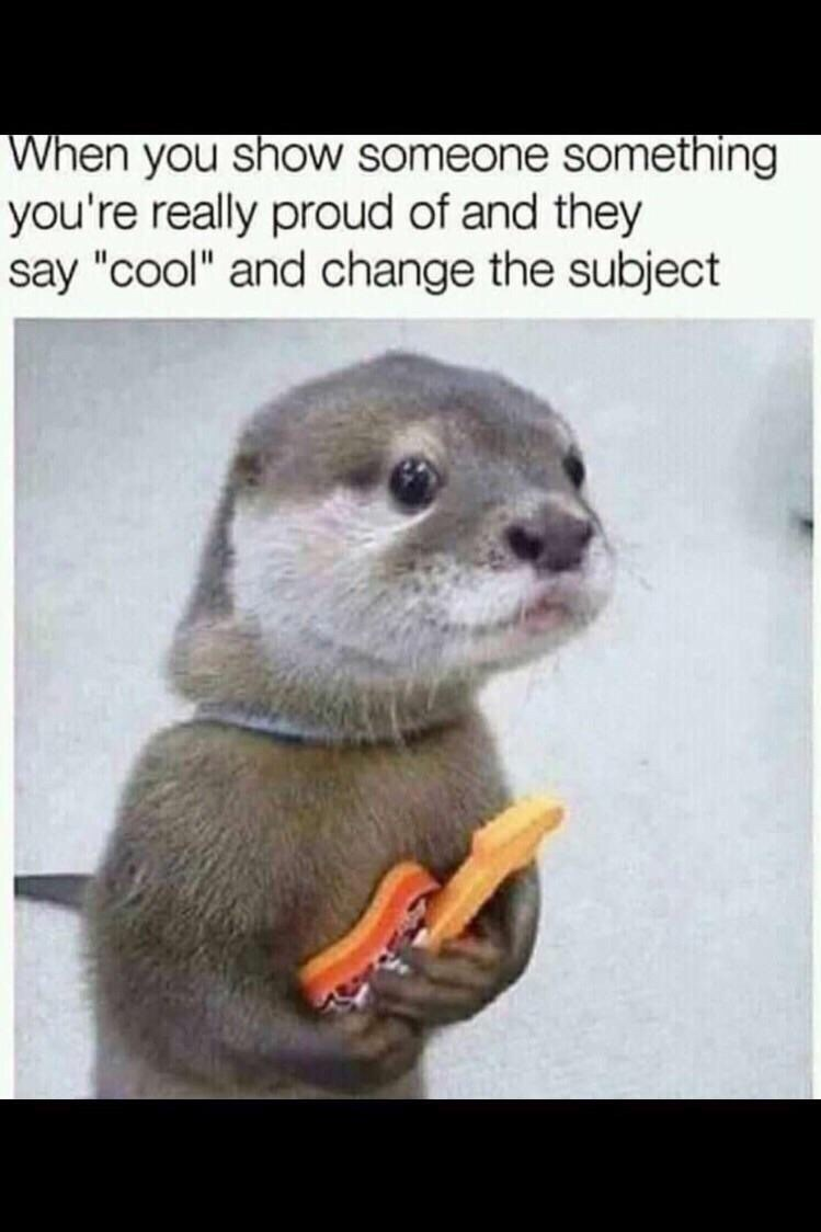 meme about being disappointed when others don't appreciate your work with picture of otter looking dejected