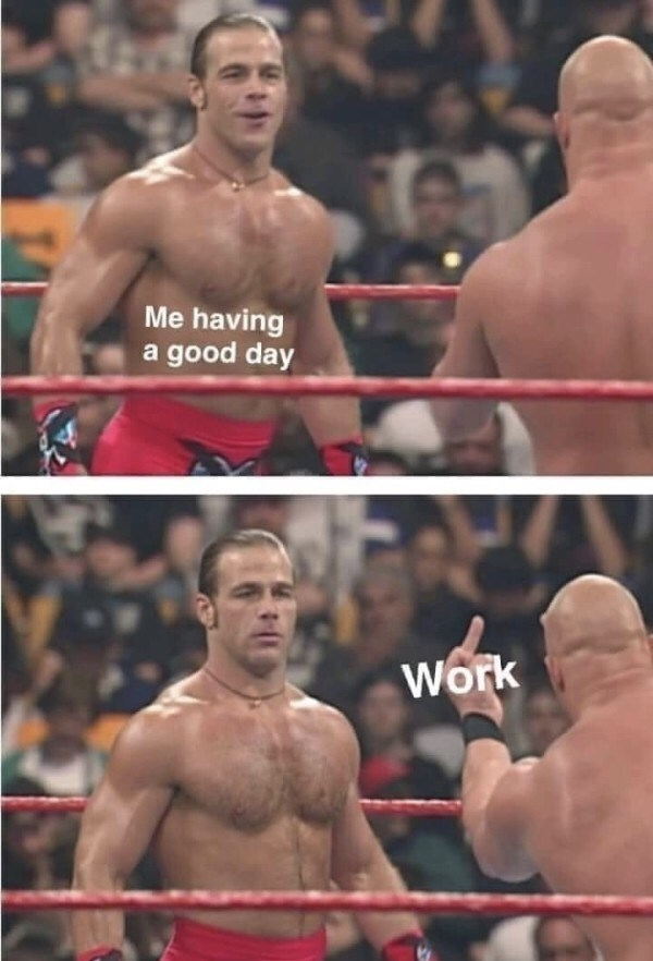 Stone Cold Steven Austin flipping Shawn Michaels representing work ruining your day