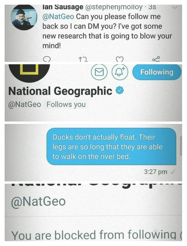 post about tweeting national geographic about ducks and then they block you