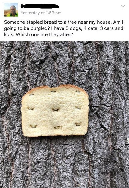 Facebook post of man asking if bread stapled to tree means his house is about to be broken into