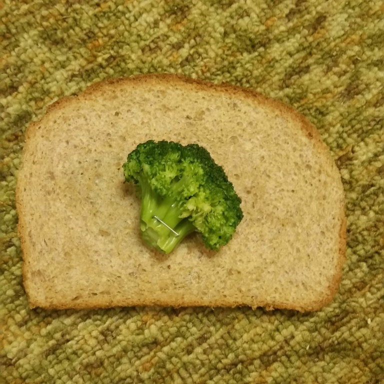 picture of broccoli piece shaped like tree stapled to a slice of bread to subvert the meme