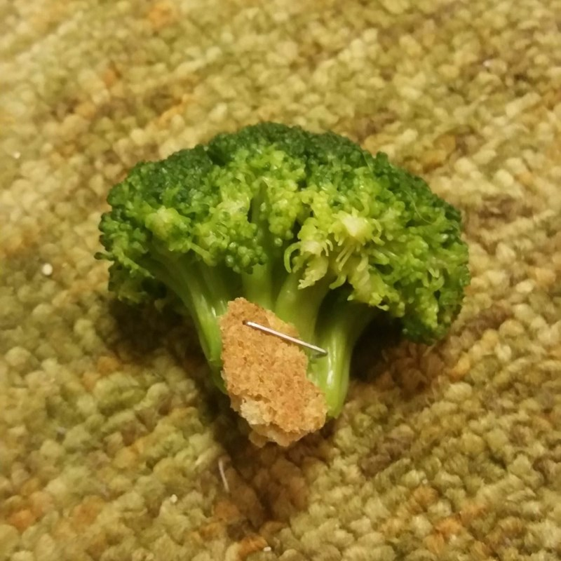 tiny piece of bread stapled to broccoli piece shaped like tree