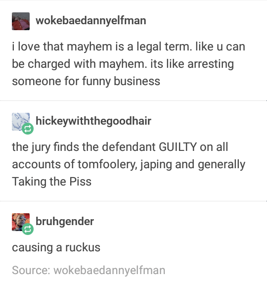 funny tumblr post i love that mayhem is a legal term. like u can be charged with mayhem. its like arresting someone for funny business hickeywiththegoodhair the jury finds the defendant GUILTY on all accounts of tomfoolery, japing and generally Taking the Piss bruhgender causing a ruckus Source: wokebaedannyelfman