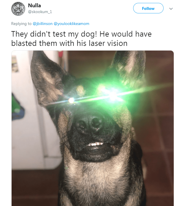 dogs study - Selfie - Nulla Follow @skookum_1 Replying to @jbillinson @youlooklikeamom They didn't test my dog! He would have blasted them with his laser vision