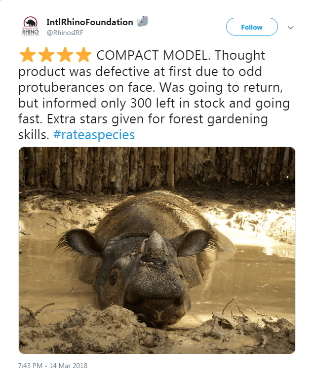 picture of rhino in mud COMPACT MODEL. Thought product was defective at first due to odd protuberances on face. Was going to return, but informed only 300 left in stock and going fast. Extra stars given for forest gardening skills. #rateaspecies 7:43 PM 14 Mar 2018