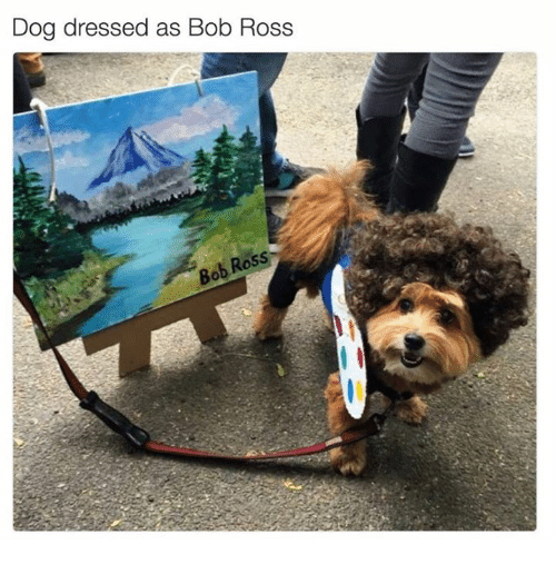 wholesome meme with pic of dog wearing a Bob Ross costume
