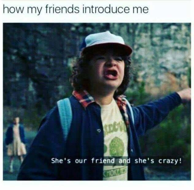 stranger things meme about being introduced as crazy by your friends