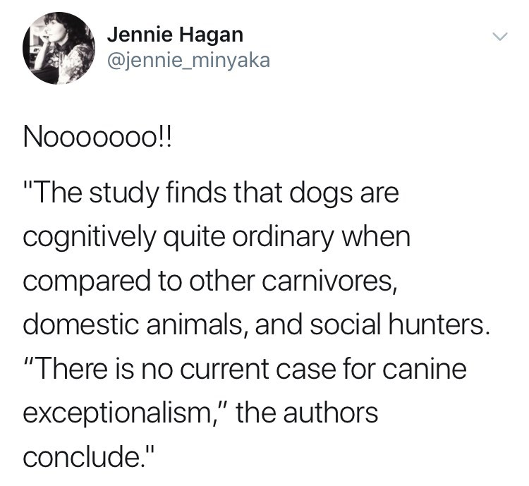 tweet post about people getting mad that a study shows dogs are ordinary