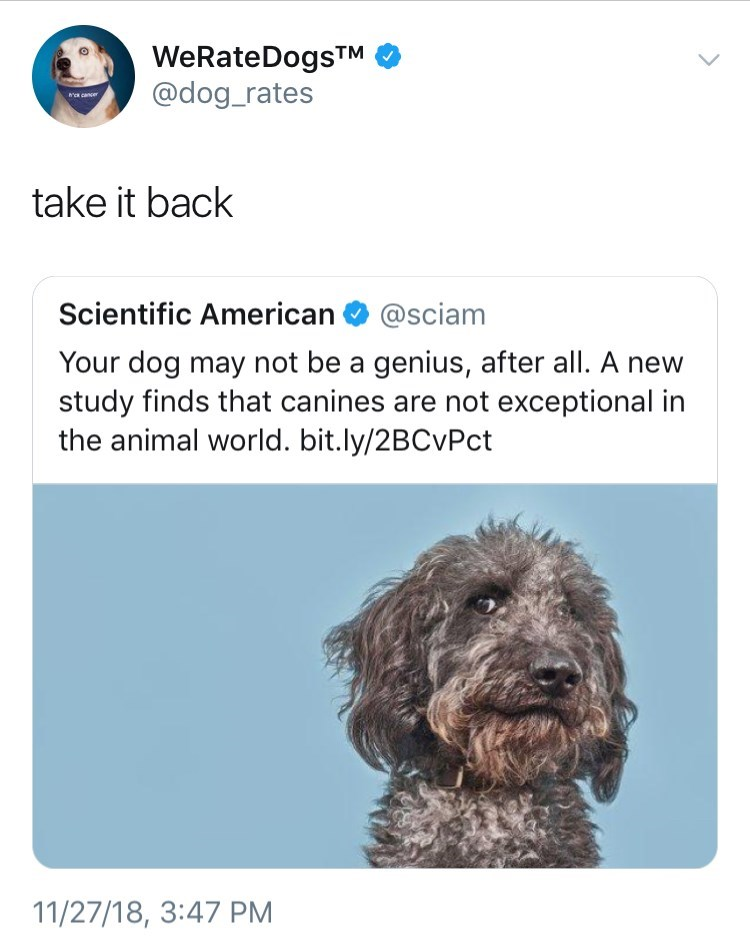 tweet post about getting offended by science after they did a study on dogs