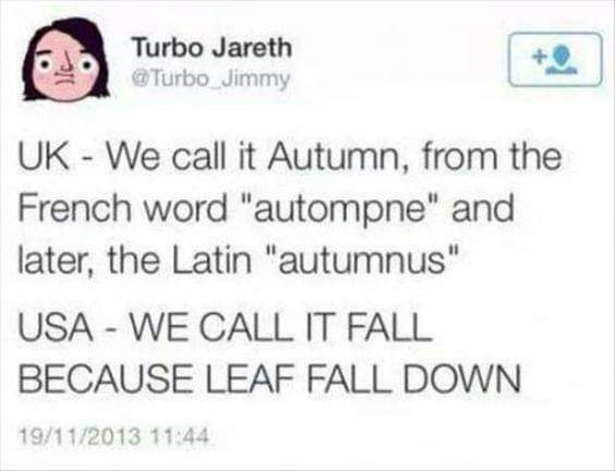 """murica meme - Text - Turbo Jareth @Turbo Jimmy UK - We call it Autumn, from the French word """"autompne"""" and later, the Latin """"autumnus"""" USA - WE CALL IT FALL BECAUSE LEAF FALL DOWN 19/11/2013 11:44"""