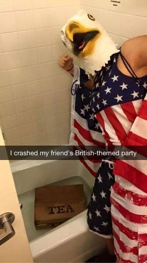 'murica meme of a person dressed in the US flag and wearing an eagle mask and tea in the tub