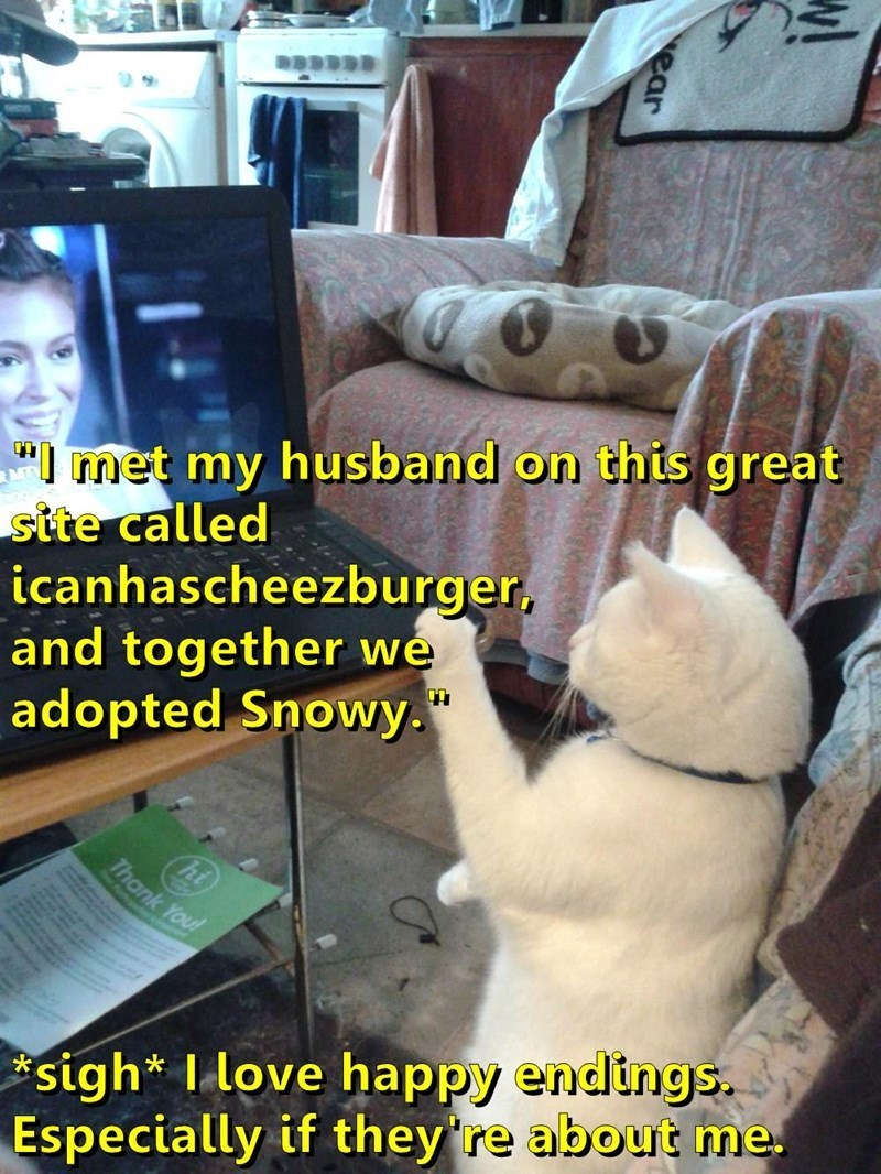 "Photo caption - "" met my husband on this great site called icanhascheezburger, and together we adopted Snowy. Thank You! sigh* I love happy endings. Especially if they're about me ear"
