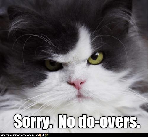 Cat - Sorry. Nodo-overs. ICANHSCHEE2E0RGER. COM