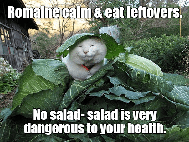 Photo caption - Romaine calm &eat leftovers No salad- salad is very dangerous to your health
