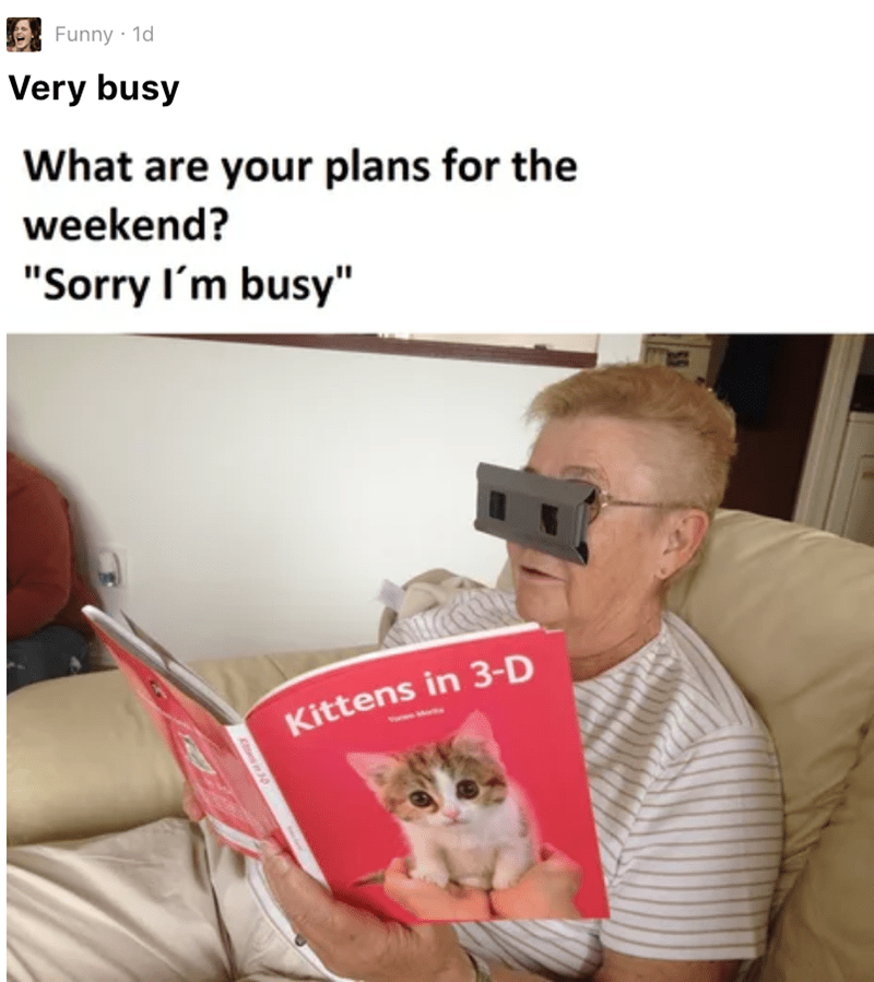 "Cat - Funny 1d Very busy What are your plans for the weekend? ""Sorry I'm busy"" Kittens in 3-D"
