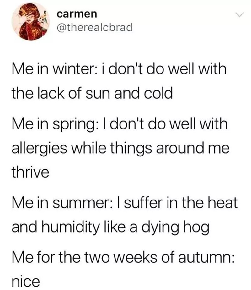 tweet post about hating every season except 2 weeks of autumn