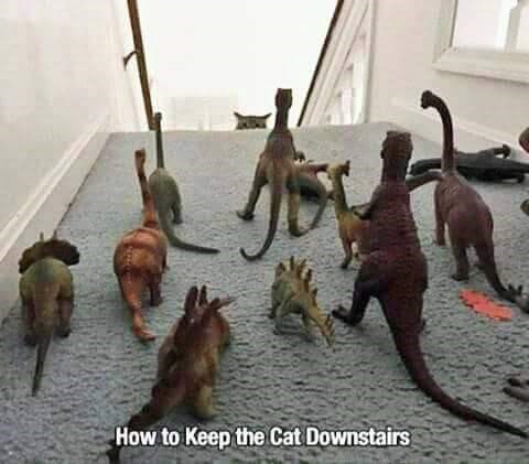pic of dinosaur toys placed on top of a staircase to scare a cat
