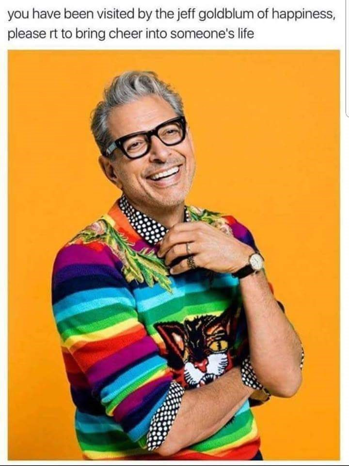 Eyewear - you have been visited by the jeff goldblum of happiness, please rt to bring cheer into someone's life