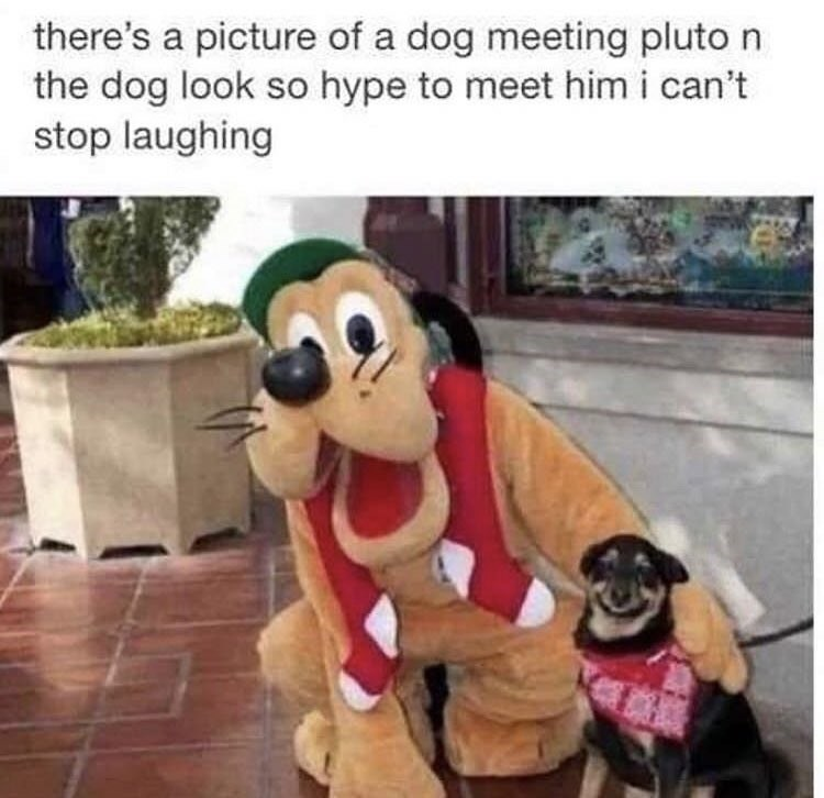 wholesome meme of pluto taking a pic next to a happy dog