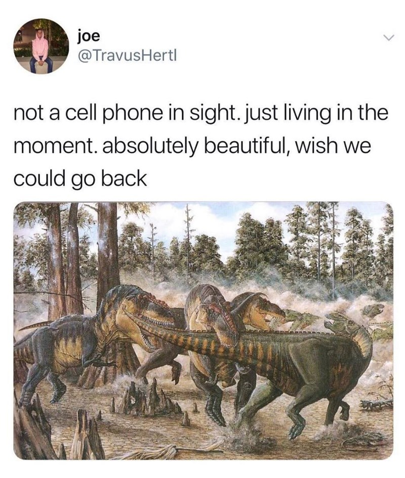 meme about the great time when there weren't cellphones during the time dinosaurs existed