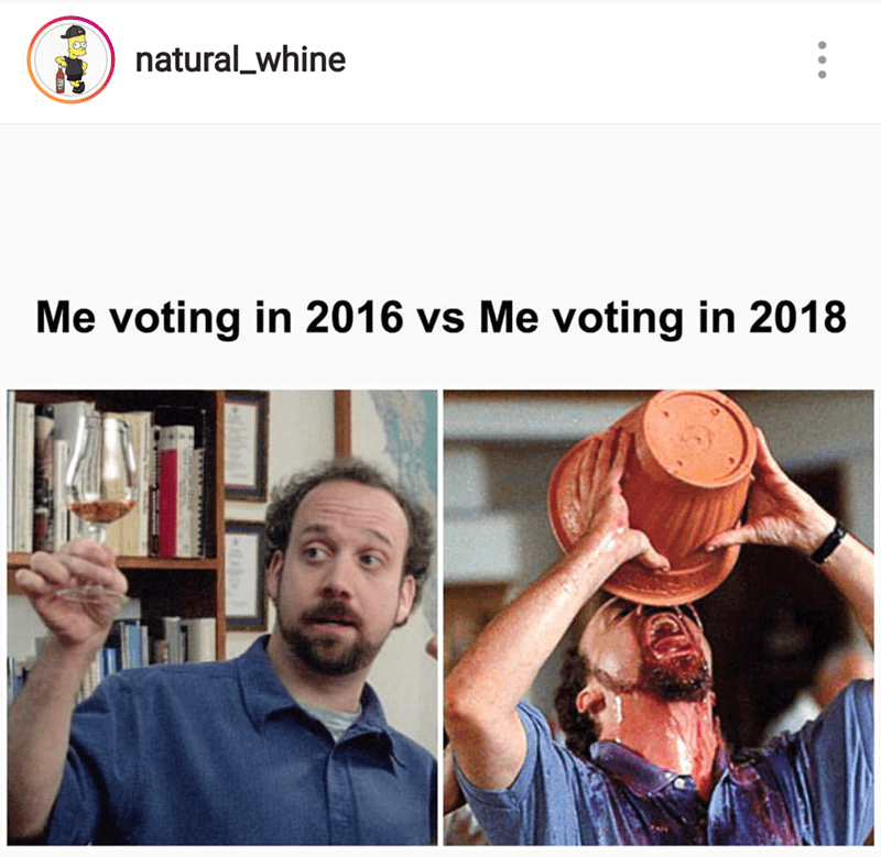 meme about needing to drink little in 2016 when voting vs. 2018