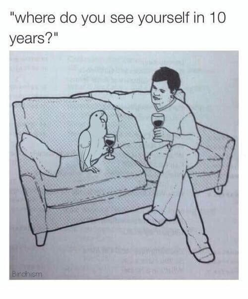 meme of a man drinking wine with a parrot on a couch asking where it will be in 10 years