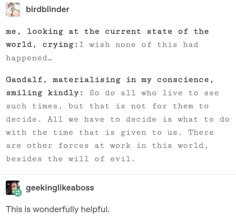 post about Gandalf giving advice on the current state of the world