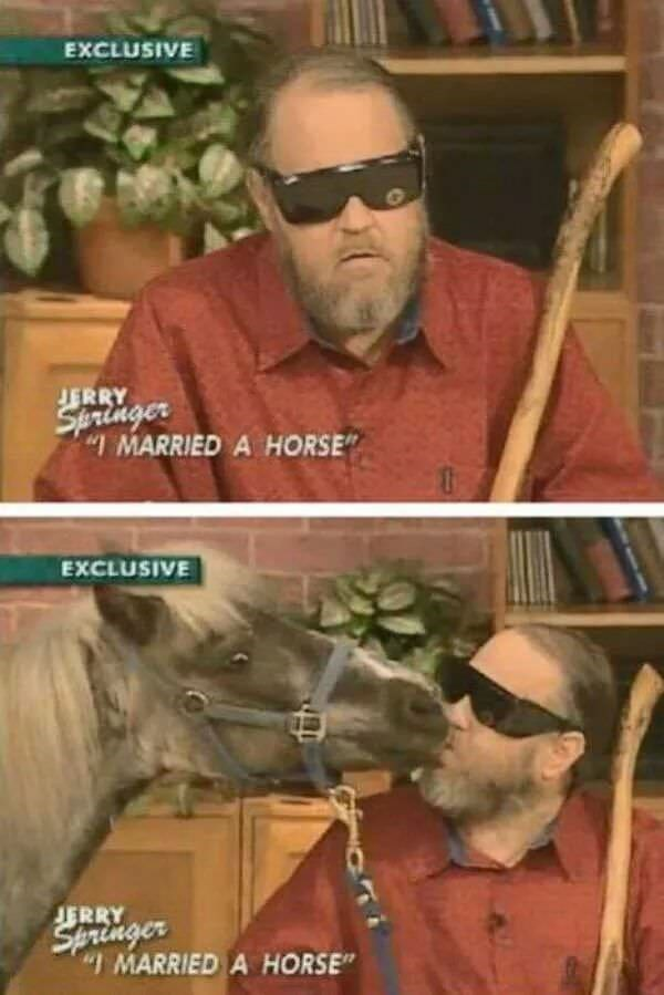 interview about a man who married a horse on the Jerry Springer show