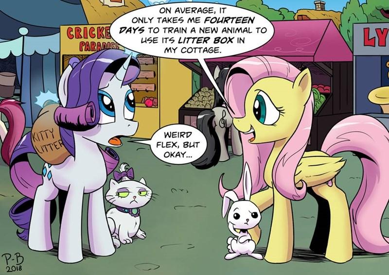 Opalescence angel weird flex pony-berserker Memes rarity fluttershy - 9242761984