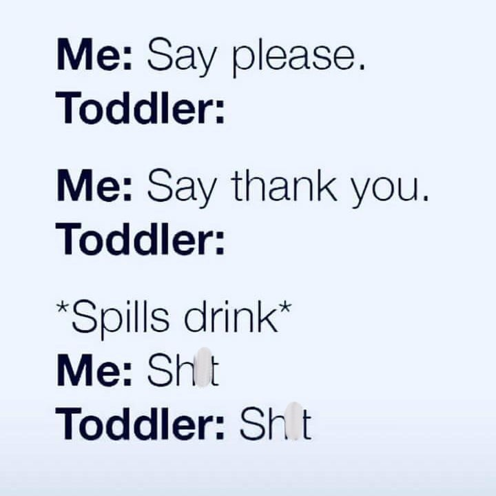 post about a toddler repeating what you say