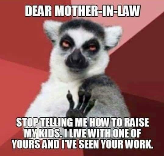 meme about getting annoyed at a mother-in-law for telling you how to raise your kids