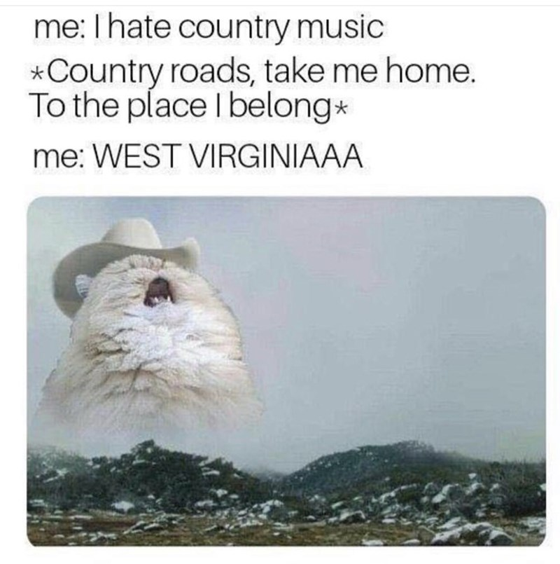 "cat meme about singing ""country roads"" after making fun of it"