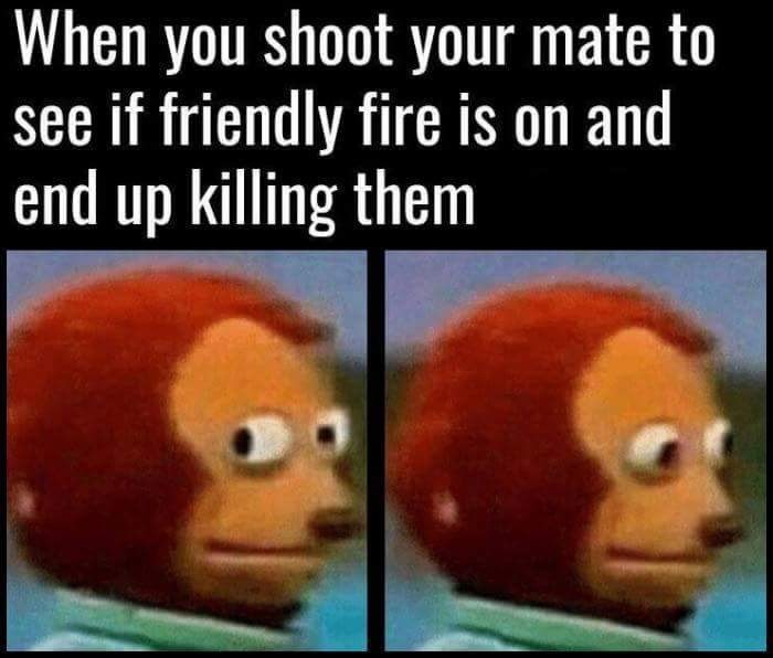 gaming meme about mistakenly killing a friend when you are playing a video game