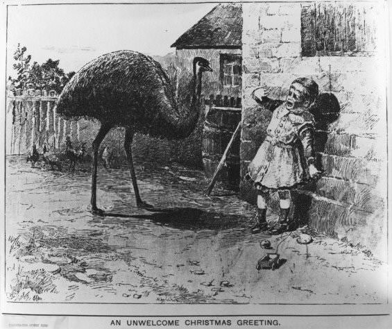 Christmas card with an illustration of a little kid terrified of an emu