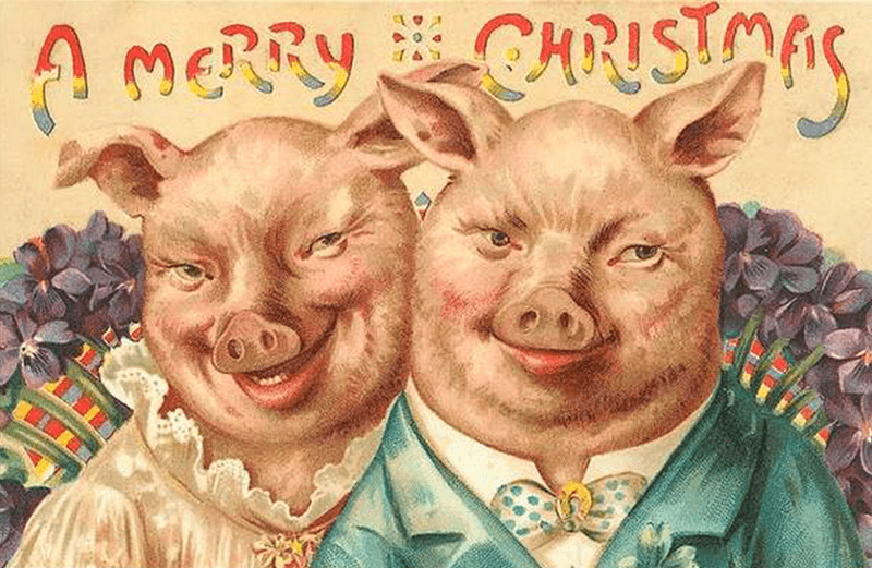 vintage Christmas card with illustration of two pigs in human clothes and uncanny smiles