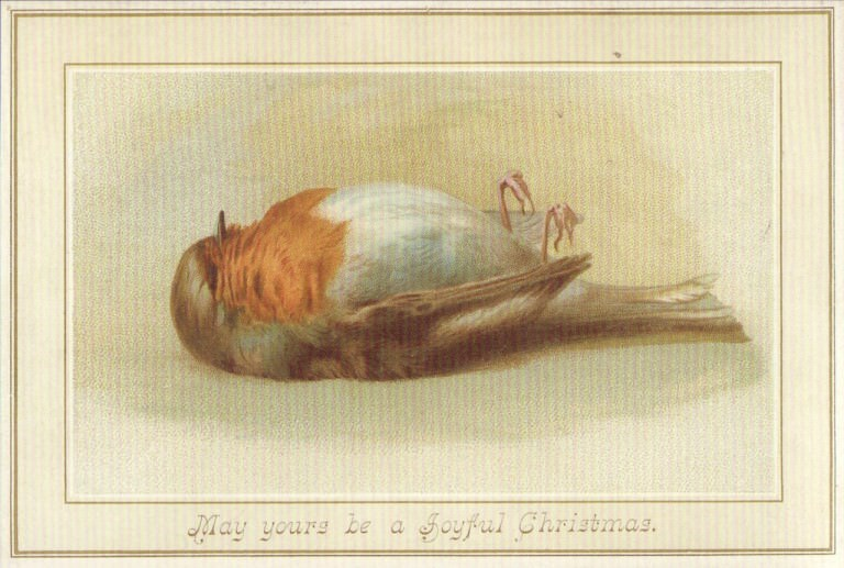 vintage Christmas card with illustration of small dead bird