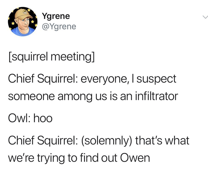 post about a squirrel meeting