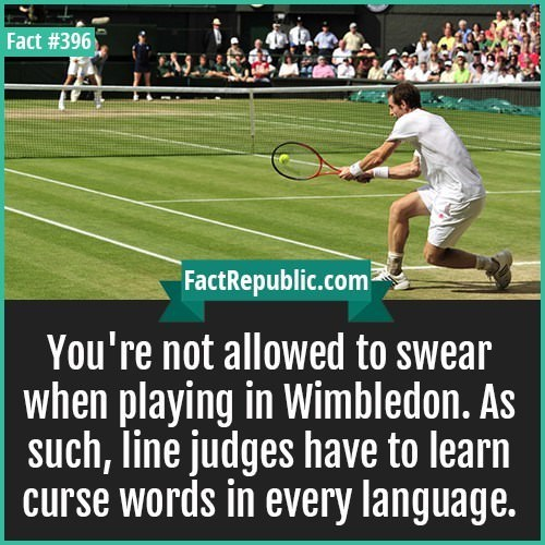 """Text that reads, """"You're not allowed to swear when playing in Wimbledon. As such, line judges have to learn curse words in every language"""""""