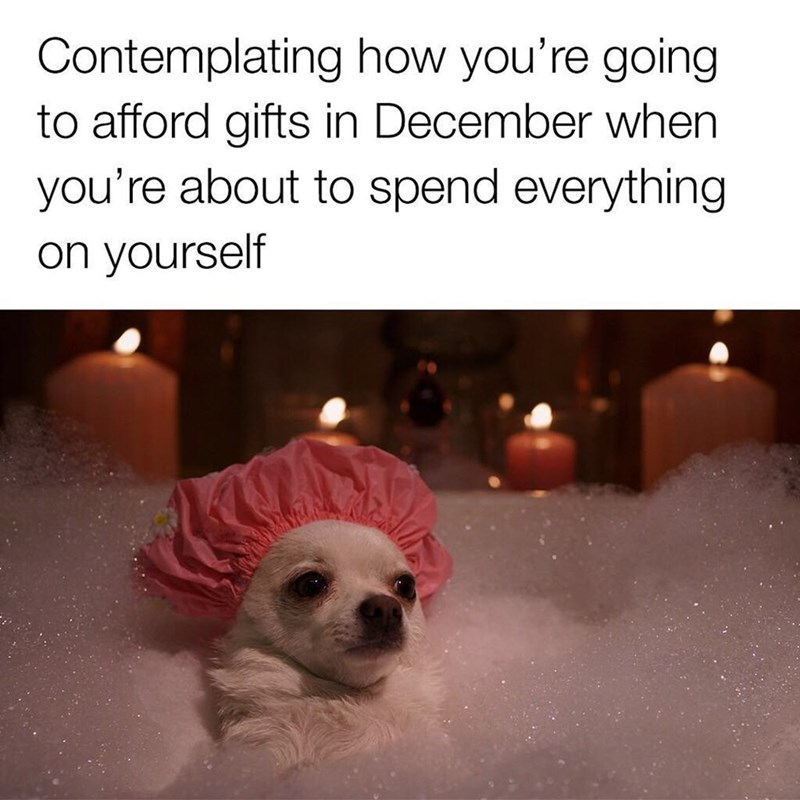 meme about spending Christmas gift money on yourself with picture of chihuahua dog sitting in bubble bath