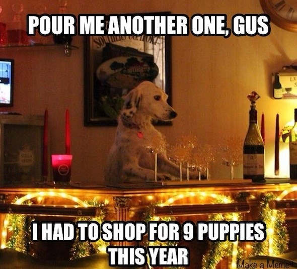 dog meme about dog getting drunk at bar after doing Christmas shopping