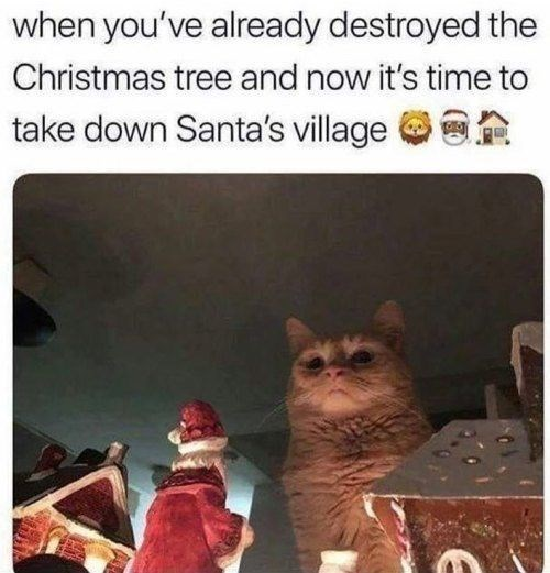 cat meme about destroying holiday decorations with picture of cat looking down ominously at miniature Santa