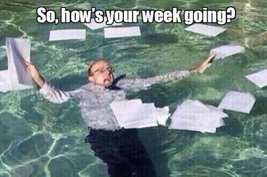 meme about how is the week going with man drowning in a pool and paperwork