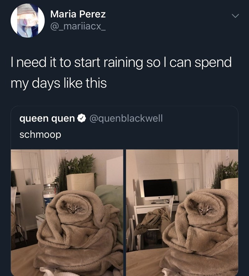 Text - Maria Perez @_mariiacx_ I need it to start raining so l can spend my days like this @quenblackwell queen quen schmoop