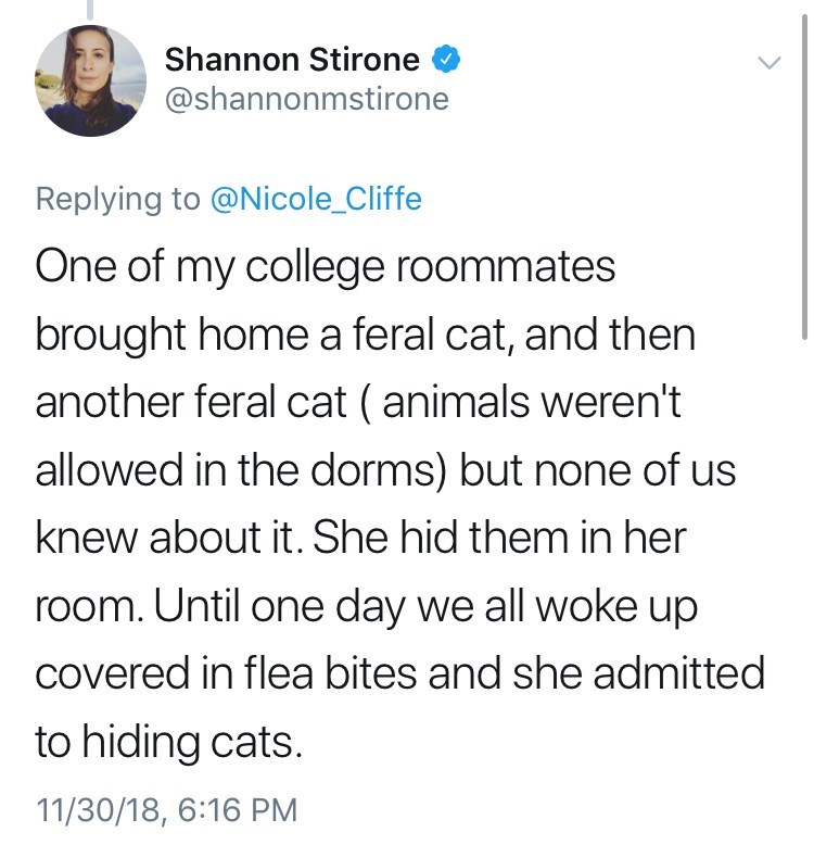 Text - Shannon Stirone @shannonmstirone Replying to @Nicole_Cliffe One of my college roommates brought home a feral cat, and then another feral cat (animals weren't allowed in the dorms) but none of us knew about it. She hid them in her room. Until one day we all woke up covered in flea bites and she admitted to hiding cats. 11/30/18, 6:16 PM