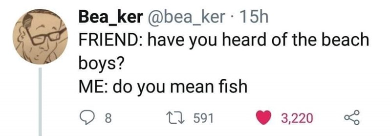 "post about the ""beach boys"" band and someone thought they were talking about fish"